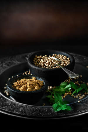 coriander: Creatively lit Indian fresh coriander seeds, also called cilantro seeds, with powdered curry powder against a rustic background with selective focus. Concept image for Indian cooking. Copy space.