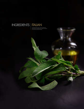ingedient: Creatively lit studio image of fresh sage herb leaves against a dark background with a decanted glass flask of olive oil. Concept image for Italian cooking ingredients. Copy space.