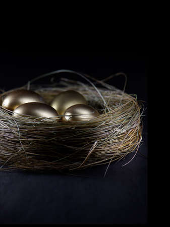 accommodation space: Creatively lit golden eggs in a birds nest against a black background. Concept image for pension investments, retirement or savings. Generous accommodation for copy space. Stock Photo