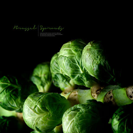 Close-up of fresh, organic seasonal Christmas and Thanksgiving Brussel Sprout vegetables against a dark background with generous accommodation for copy space.