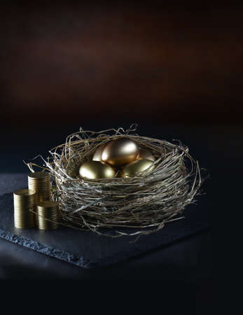 Gold eggs in nest with stacked coins against a dark, rustic background with generous accommodation for copy space. Concept image for investments, pensions and savings. Stock Photo