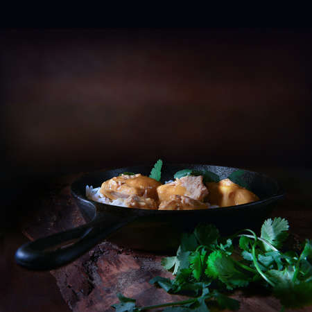 Traditional Indian cuisine, Chicken Curry with cilantro herb garnish (coriander) and basmati rice shot against a rustic background with accommodation for copy space. The perfect image for your Indian menu cover art. Stock Photo