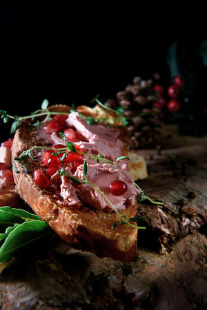 Lavishly spread fresh Brussels pate on toasted organic white bread slices with pomegranates and thyme herb garnish. The perfect image for your bistro menu cover art. Copy space. Standard-Bild - 116414118