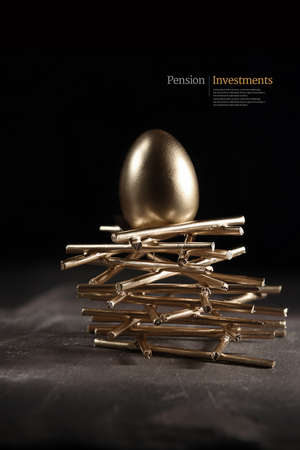 Creative, modern concept image for pension investments and asset management. Gold bird egg on a stark nests shot against a dark, slate background with accommodation for copy space. Standard-Bild