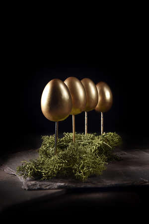 Unique, original creative concept image for organic and sustainable pension growth. Gold eggs imitating trees embedded in green foliage shot against black with copy space. Standard-Bild