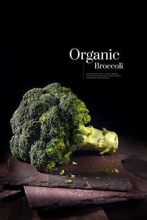 High resolution, sharp focus image of an organic broccoli head shot against a dark background with natural slate sheets with generous accommodation for copy space.
