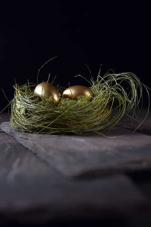 Concept image for pensions and retirement investments. Twogolden goose eggs in abirds next shot againsta  dark background with generous accommodation for copy space.
