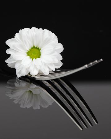 silver service: a fork with blossom (closeup) Stock Photo