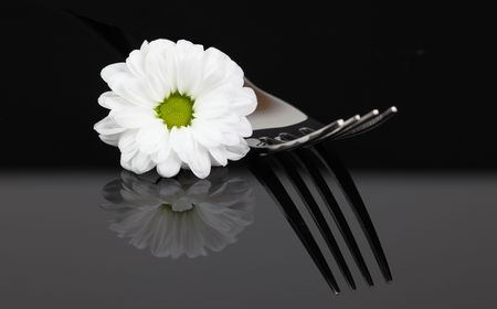 fork with blossom isolated (black background) photo