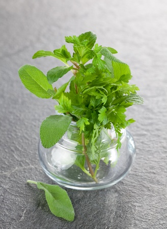 mixed herbs in a glass  photo