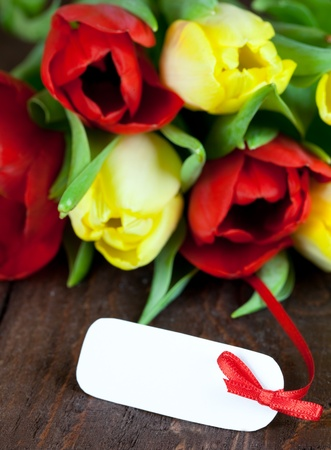 fresh tulips with tag for copy space Stock Photo - 8682245