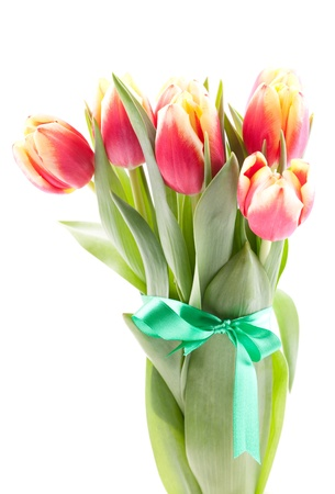 tulips bouquet with ribbon isolated on white background  Stock Photo - 8835401