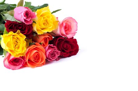 colorful roses isolated on white background with copy space Stock Photo - 8951539