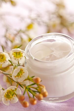 cream in a jar with blossom Stock Photo - 9149253
