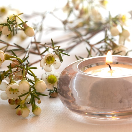 white candle: wellness concept with candle and blossom