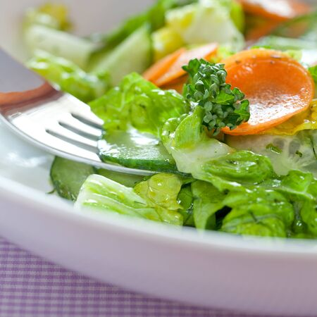 salad dressing: mixed salad with cucumber on a plate