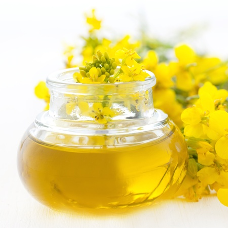 fresh rapeseed oil with rape blossoms