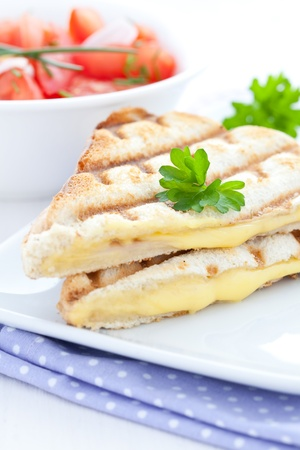melted cheese: fresh grilled sandwich with cheese