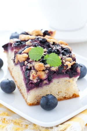 bilberry: fresh bilberry cake on a plate