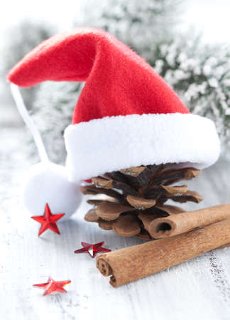 pine cone with hat and cinnamon sticks photo