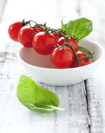fresh tomatoes and basil in bowl  Stock Photo - 9980602