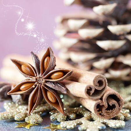 advent: kruiden voor Kerstmis kaneel en anijs Stockfoto