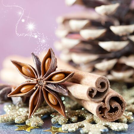 advent time: spices for christmas cinnamon and anise