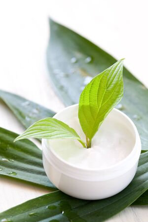 face cream in a jar with green leaf