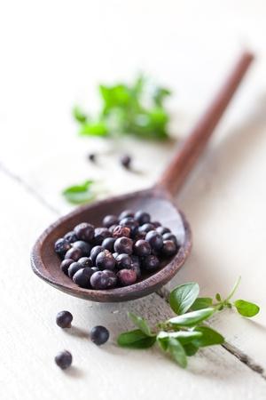 juniper: dried juniper berries on spoon  Stock Photo