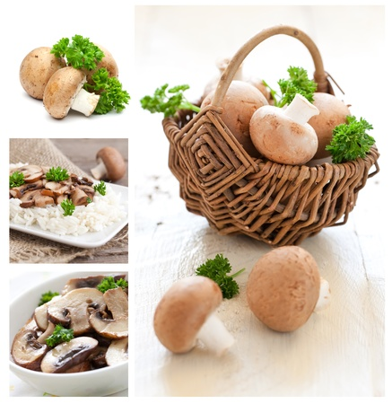 edible mushroom: collage with raw mushrooms and rice meal  Stock Photo