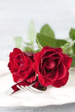 dinner for valentines day with copy space Stock Photo - 13571007