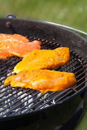 marinate: chicken meat with marinade on a grill