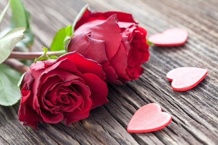 valentine      day: roses and hearts on wood