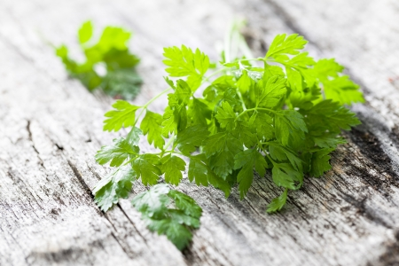 chervil on wooden background
