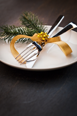 table setting  with fir and copy space  photo