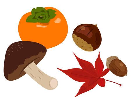 Ingredients of autumn Ilustração