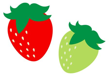 The strawberry Illustration