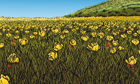 primavera: Flowery Meadow The beautiful season