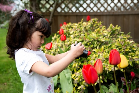 Young photographer taking a picture of tulips in the garden Imagens