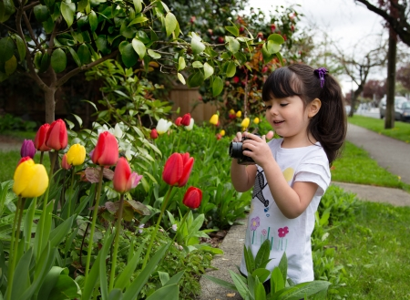 Toddler adjusting setting on her camera to take a picture of spring flowers photo