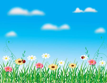 abstract nature flower landscape blue sky grass vector Illustration