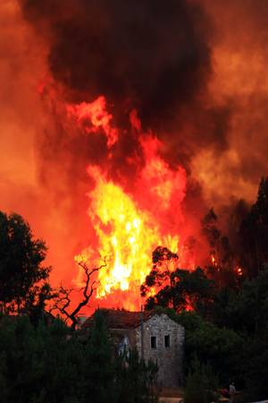 wildfire: Wildfire -  Pombal - Portugal