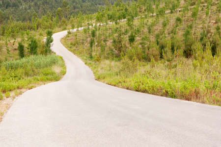 Tarmac road to the top of the hill , surrounded by woods Stock Photo - 9659835