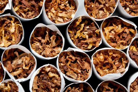 Close up of a smoking cigarettes in a stack Stock Photo - 10028179