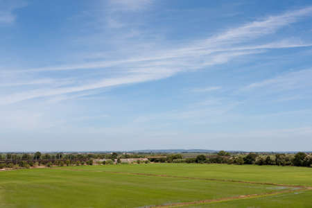 Blue sky over green field oin Portugal lowlands Stock Photo - 10555086