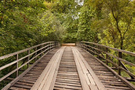 wooden bridge against trees and falling leaves