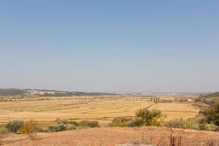Panorama view of lowlands of wheat in Portugal during autumn photo