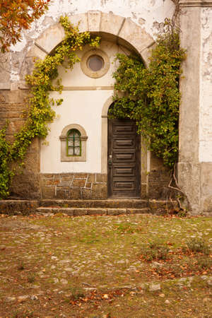 Old church facade covered by autumn plants and foliage  photo