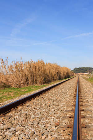 rapid steel: Landscape of an portuguese railway against forest and blue sky Stock Photo