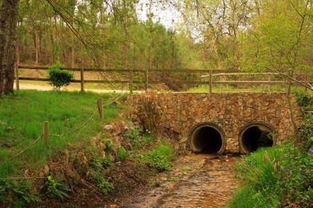 riverside trees: Stone bridge over small riverside under trees